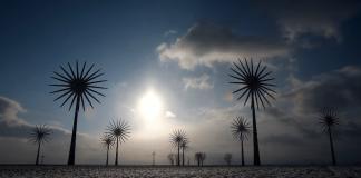 Windkraftanlagen in Feldheim an der Nordsee.