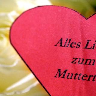 In Deutschland und anderen Ländern wird am 11.Mai der Muttertag gefeiert.