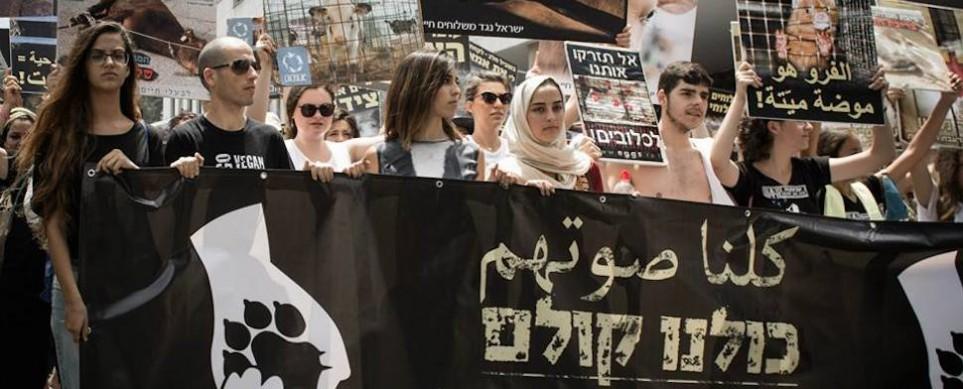 In Haifa kamen vergangenen Freitag 1.000 Juden und Muslime zusammen, um sich für Tierrechte einzusetzen und auf veganes Leben aufmerksam zu machen. Aus dem gemeinsamen Projekt entstand auch eine große Freundschaft.