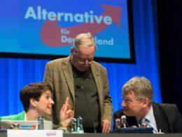 Bundestagswahlen 2017: 13% egoistische, enttäuschte Deutsche