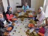 Mit Sarma aus Denizli nach Europa
